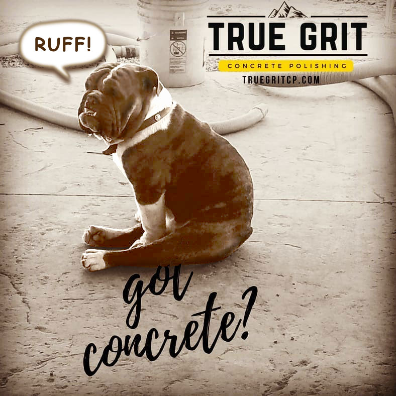 True Grit Concrete Polishing